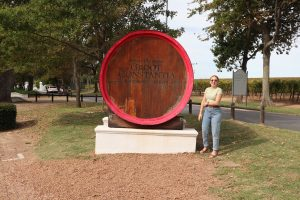 Read more about the article Wine tasting at Groot Constantia
